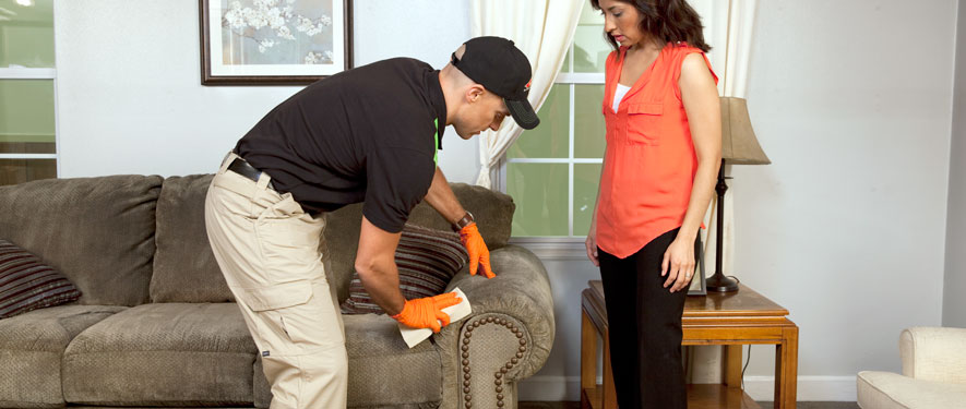 Bangor, ME carpet upholstery cleaning